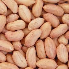 بذر بادام زمینی درجه یک